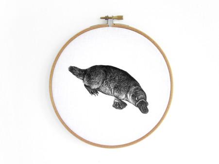 schnabeltier-duckbill-platypus--im-stickrahmen-embroidery-hoop-bild-renna-deluxe
