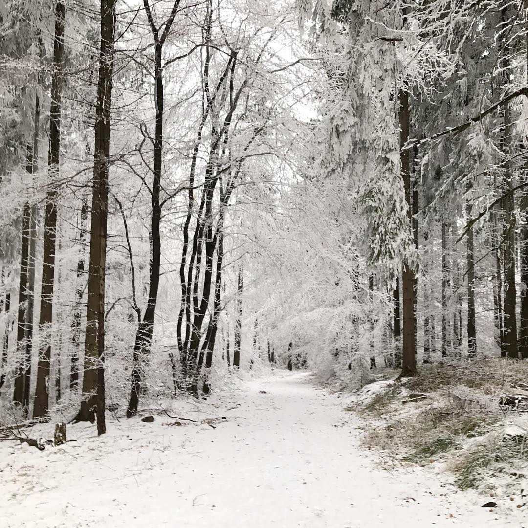 winter im taunus renna deluxe